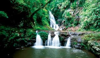The Waterfall Way
