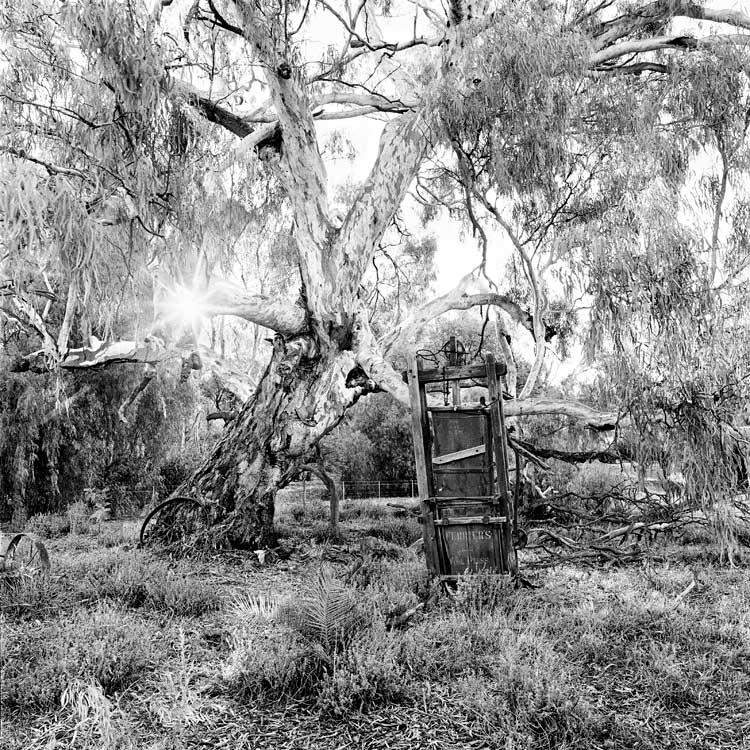 Ferrier Wool Press, 2005: The ancient form of an old Ferrier Wool Press salutes a bygone era as it stands, semi-erect, under a red gum at Nora Bend in Tooleybuck, NSW.