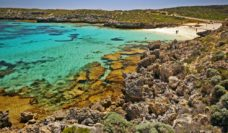 Photo portfolio of Rottnest Island by Chris Tate