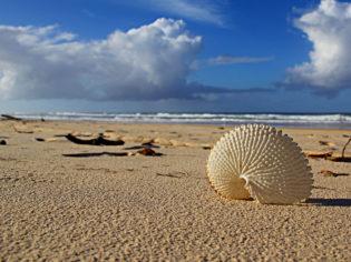 Beach Beauty: Rainbow Beach, Queensland.