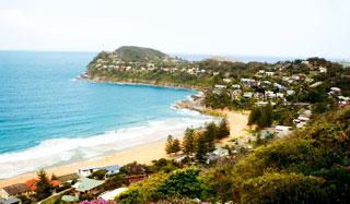 Sydney to whale beach