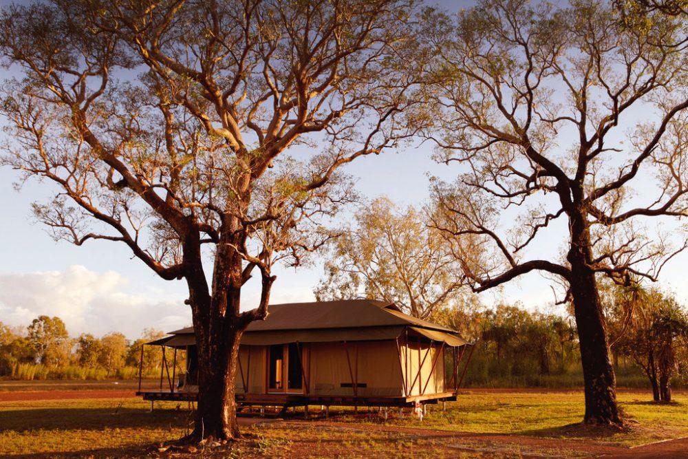 Family-sized safari tent at Wildman Wilderness Lodge