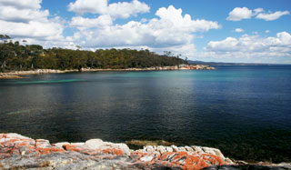 Coast to Coast in Tassie