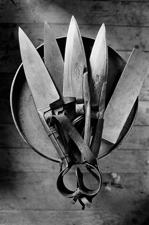 Shearers Blades, 2005: This was taken during the final shearing at the Yanga Shed in Balranald, NSW, in November 2005. The property was then sold to the NSW government to become a national park. Shearers arrived from all over the country to be there.