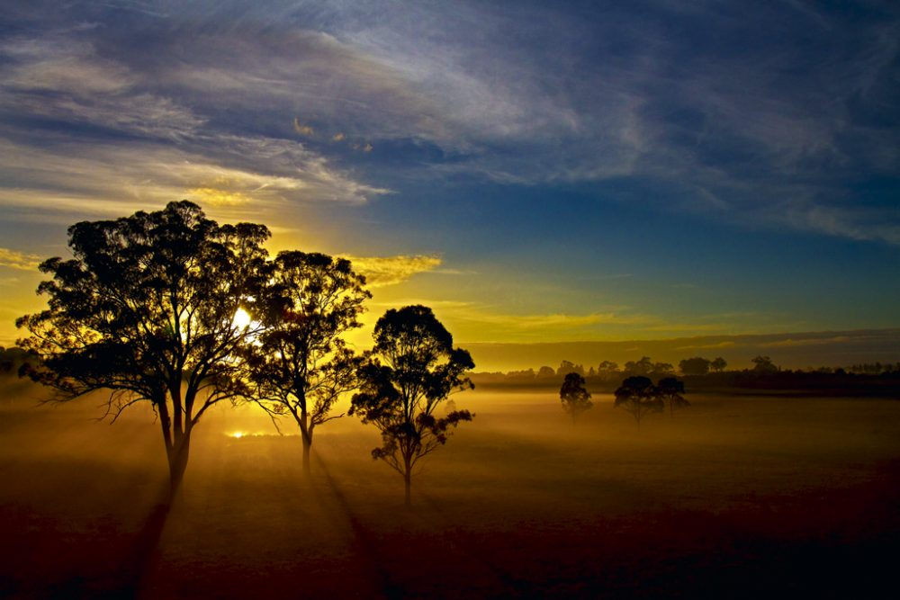 'Your Shot' winner: Kevin Ho. Taken of the Hunter Valley in NSW