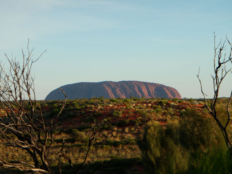 Ride a Camel Around Uluru