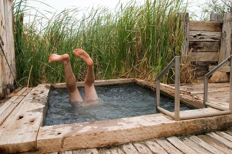 Freshening up at Coward Springs on the Oodnadatta. Image by Robyn Rosenfeldt