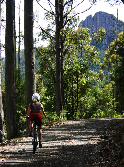 Twenty minute's from Hobart, Mount Wellington is a cycling and hiking hotspot.