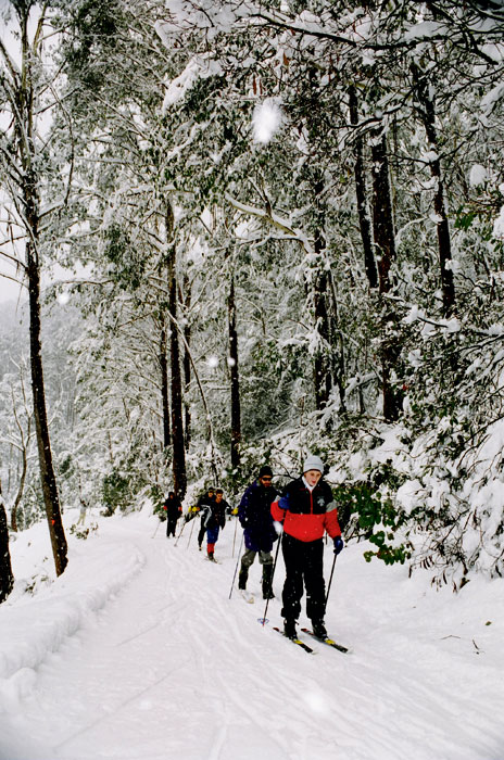 Cross country skiing, Mt Stirling, Victoria.