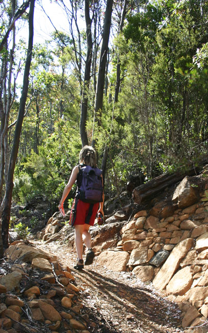 Hiking past drystone walls Mount Wellington near Hobart