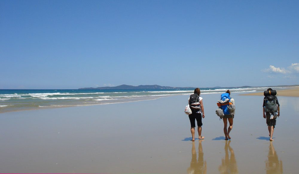There are many walking tracks around Noosa for various fitness levels, particularly through Noosa National Park.