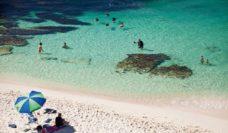 Rottnest Island - a classic summer affair