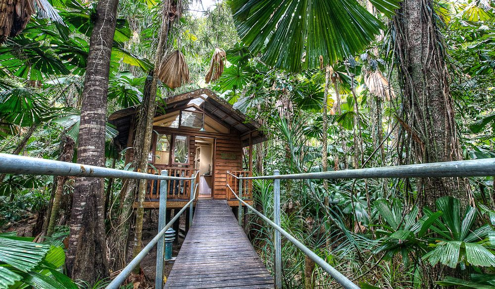Daintree Wilderness Lodge, QLD