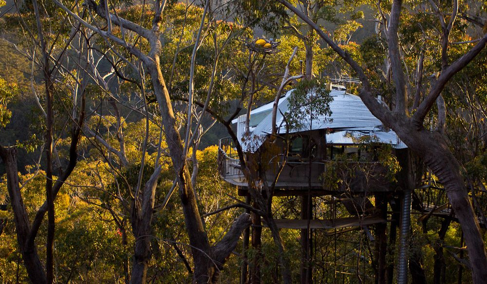 Wollemi Wilderness Treehouse, NSW