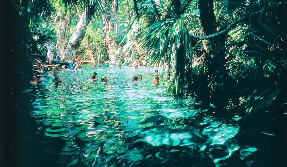 Mataranka Thermal Pool in NT