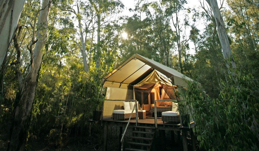 Paperbark Camp in Jervis Bay, NSW - Image by Paperbark Camp