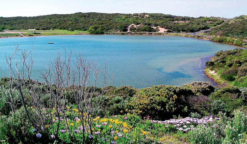 Pool of Siloam in Beachport, SA