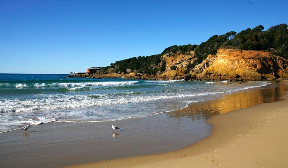 Tathra, on the NSW far South Coast