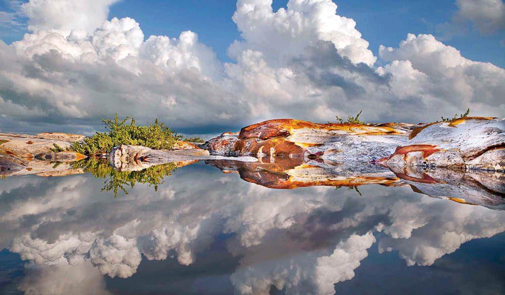 Near Darwin after a monsoonal downpour (Dieter Berghmans)