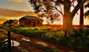 Old home at sunrise, near Murray Bridge, SA (Andrew LeGallez)