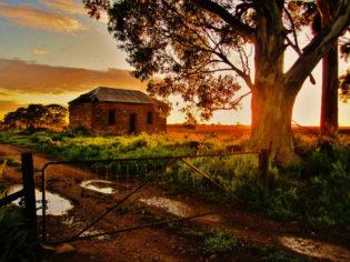 Old home at sunrise, near Murray Bridge, SA (Andrew LeGallez)