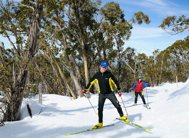 Cross Country on Mt Baw Baw's extensive trails
