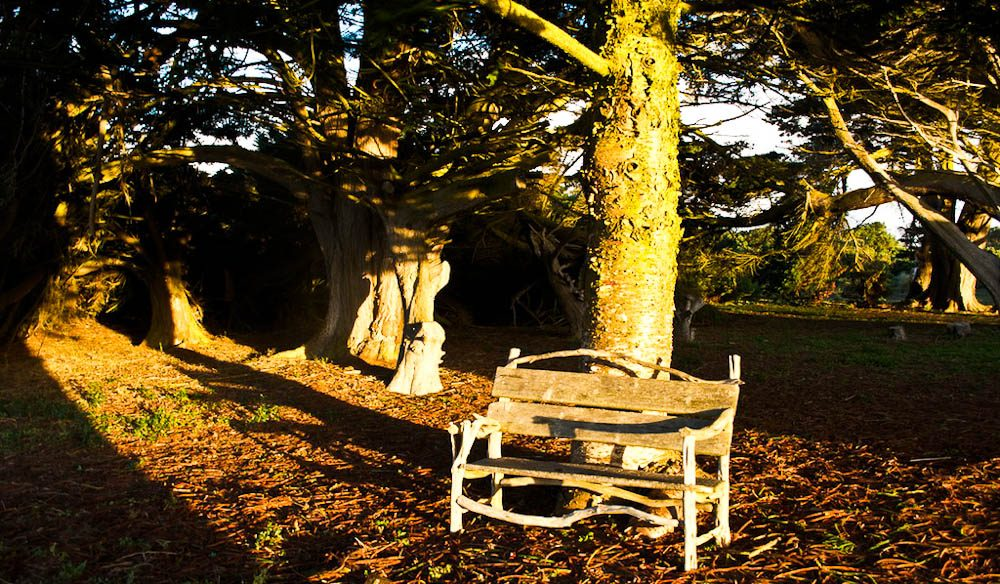 A place to sit in the afternoon sun beside the Homestead