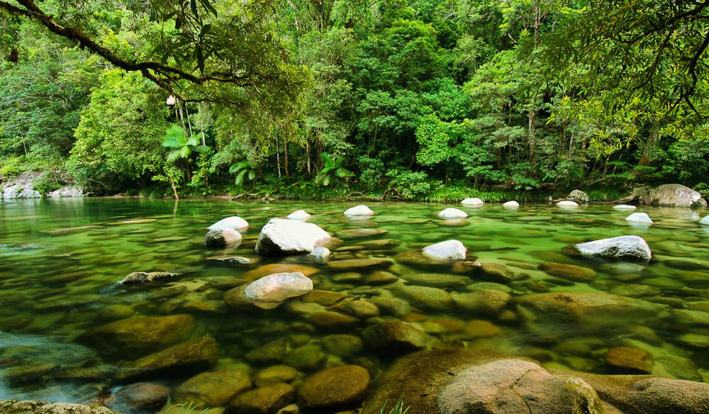 Pat Rafter's favourites: Mossman River, Daintree National Park