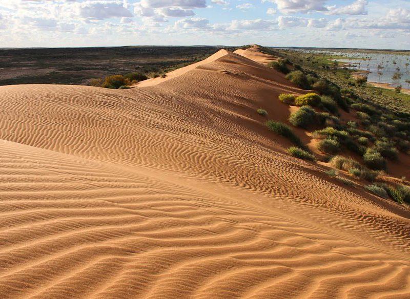 Vic Widman's Big Red, Simpson Desert, 70 kilometres west of Birdsville