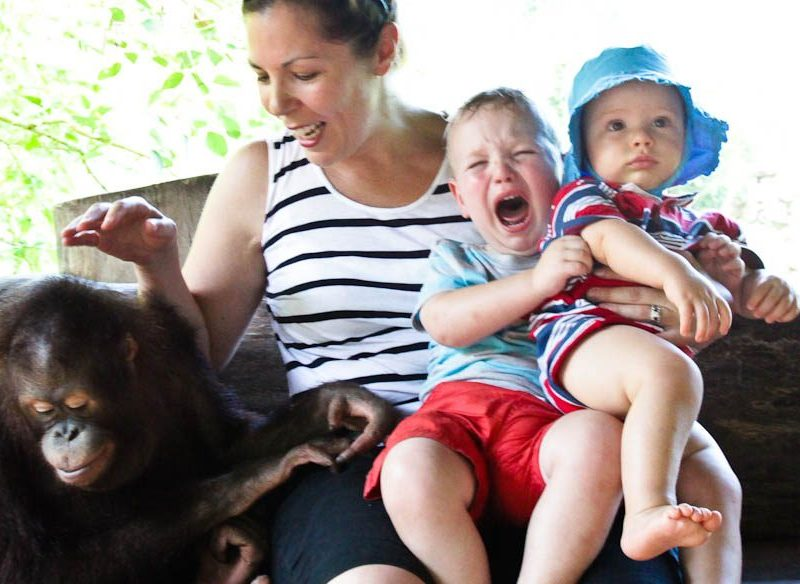Quentin's family 'enjoying' their holiday - refer to his lessons one through four