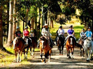 Margaret River by horseback