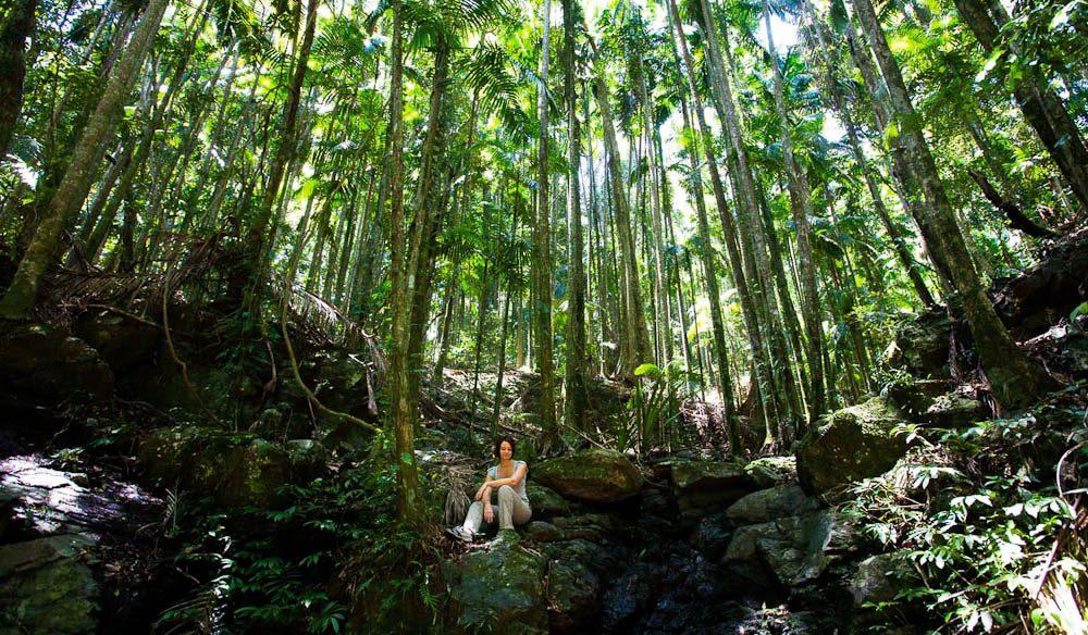 The Eden Health Retreat, Currumbin Valley in Gold Coast's Hinterland.