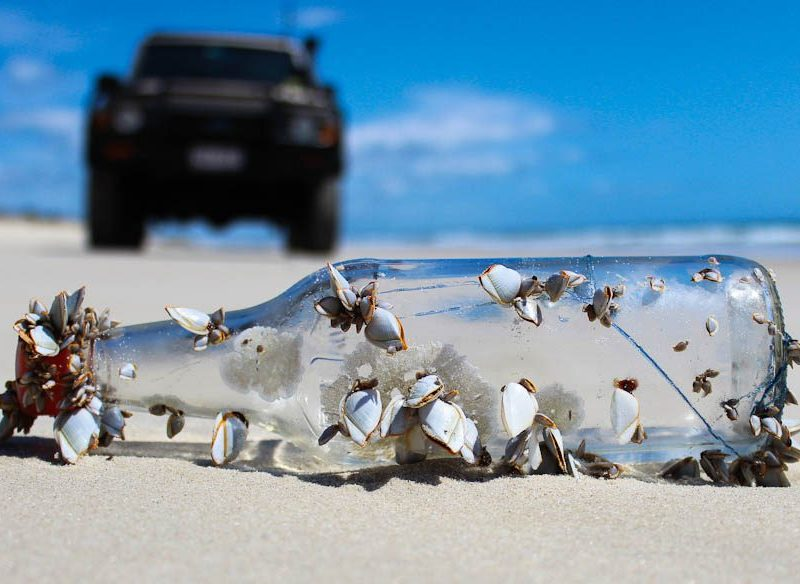 Look what the tide washed up at Bribie Island, Queensland.