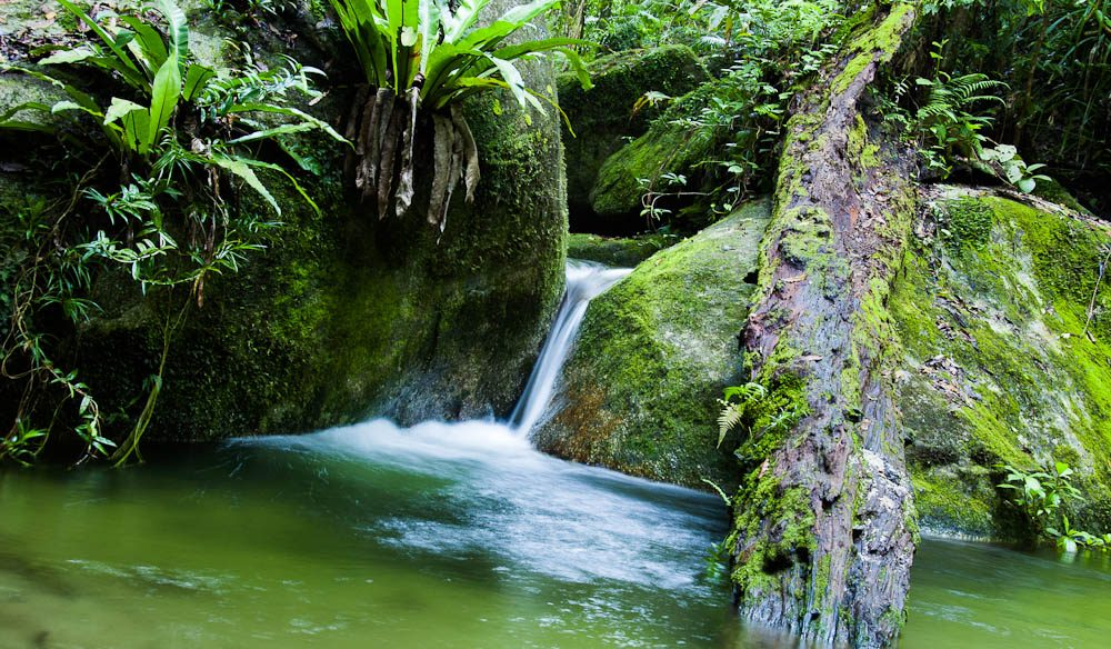 The secluded waterfalls of Mossman Gorge, Daintree rainforest.