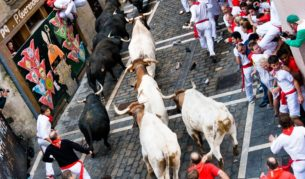 If it's anything even remotely as dangerous as running with the bulls in Pamplona, don't assume your travel insurers will come to the party when things come to a head.