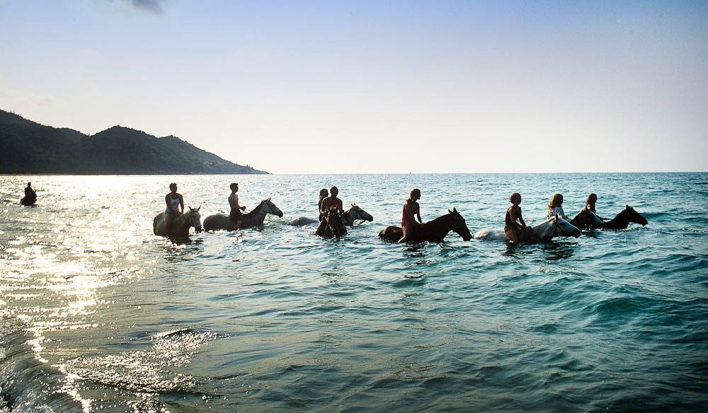 A swim with horses in where else but Horseshoe Bay, Magnetic Island