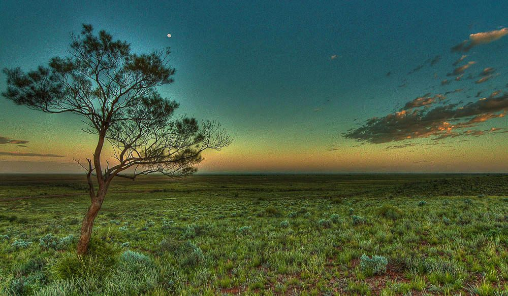 Mundi Mundi Plains, home of Mad Max 2 and Priscilla Queen of the Desert. (Hartmut Toepler).