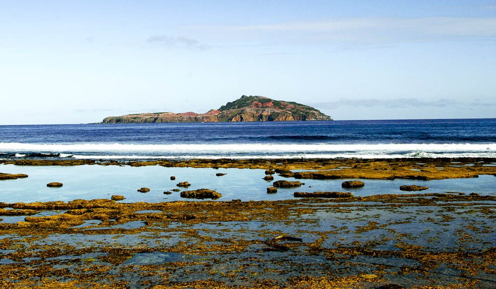 Phillip Island is great for a day hike from Norfolk Island.
