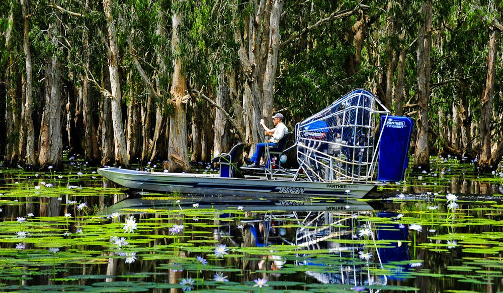 Airboating at Mary River Floodplains, home of 'Ten Canoes'.