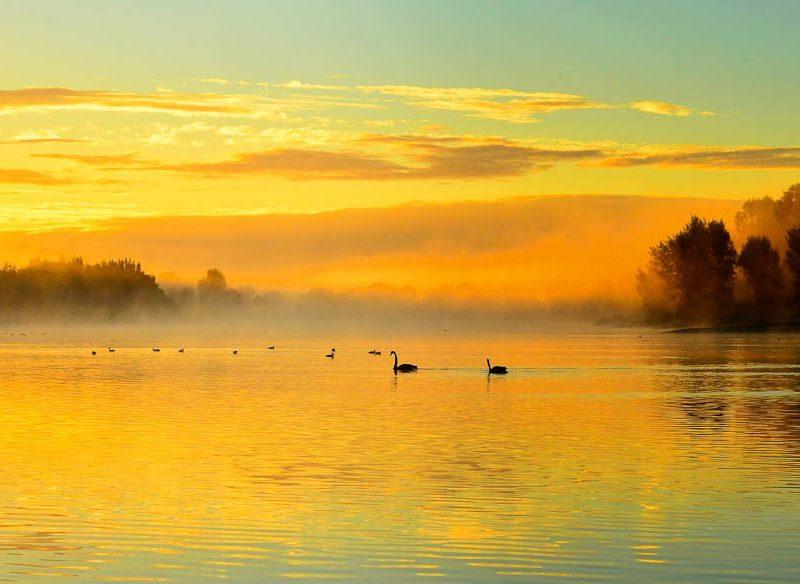 Wellard Wetlands at Sunrise, WA