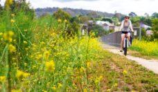 Gippsland cycleway