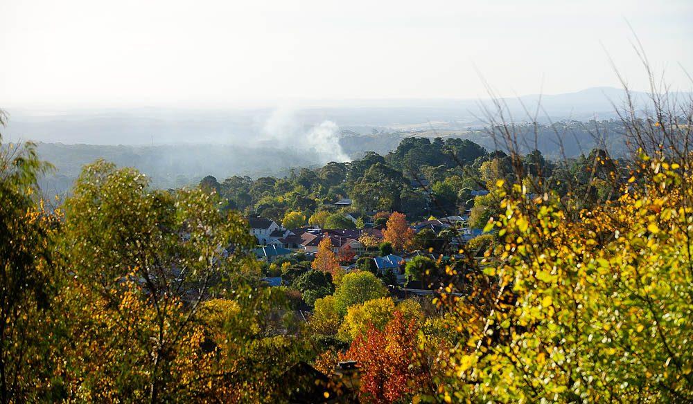 Wombat Hill Botanical Gardens overlooking Daylesford - Jesse Booher.