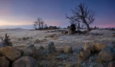 Granite outcrops at dawn, Cooma (Philip Howell, ACT)