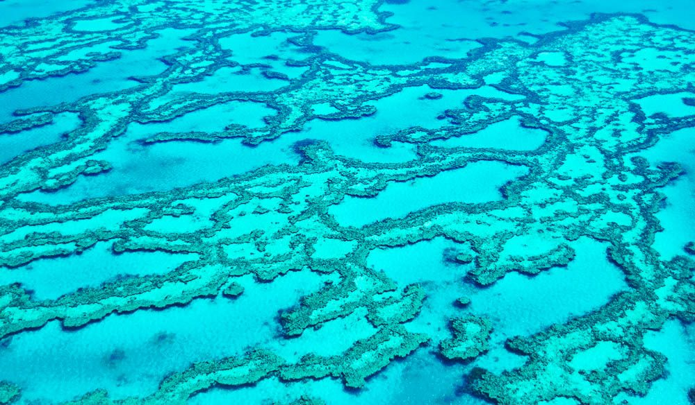 Beauty and the Reef- Hayman is an ideal Great Barrier Reef destination