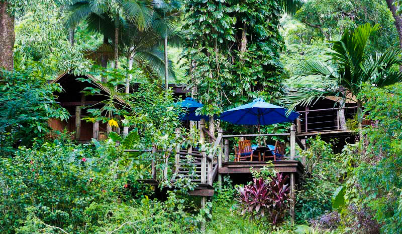 Rainforest hideaway - Bloomfield Lodge ranks no. 1 for World's Best Remote Hotel.