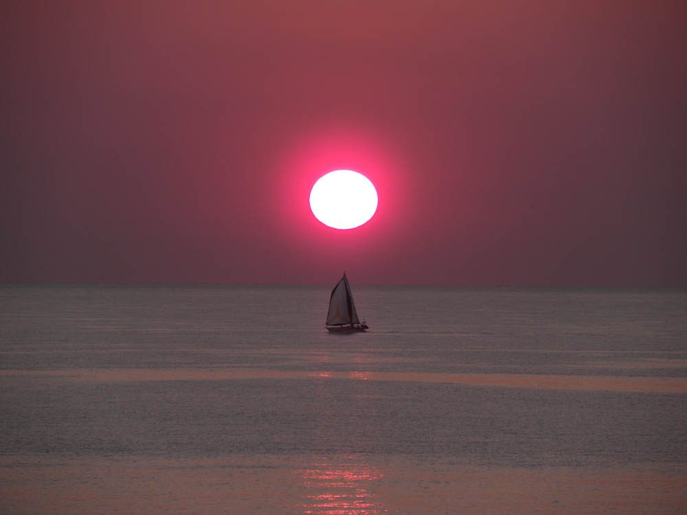 Cable Beach's sinking sun (by Ron Delaney).