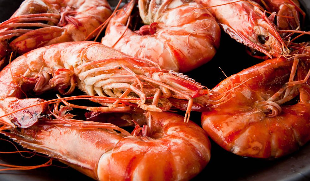 Craig Tansley only knew it was Christmas when mum bought a few kilos of prawns from the 'Bruns co-op'.