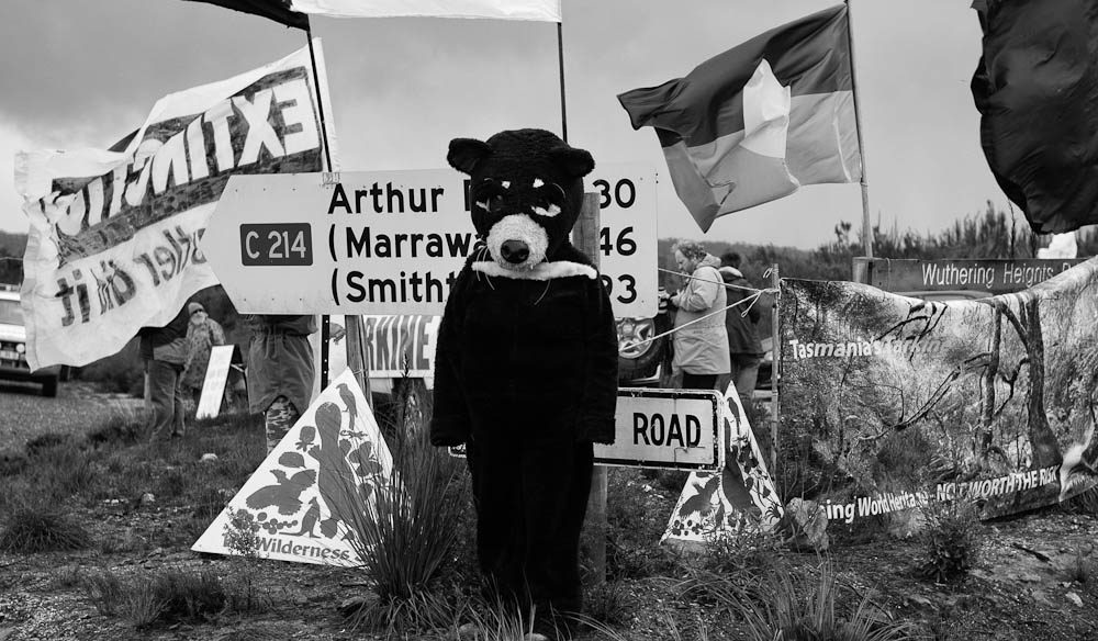 Dangerous dress-ups: A protester dons a Tasmanian Devil suit against the Shree Minerals mine.