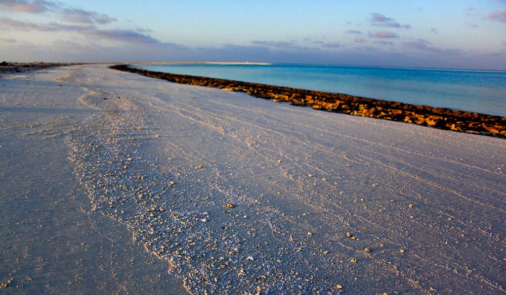 Deserted shores: Bedwell Island, Rowley Shoals (photo: Fleur Bainger).