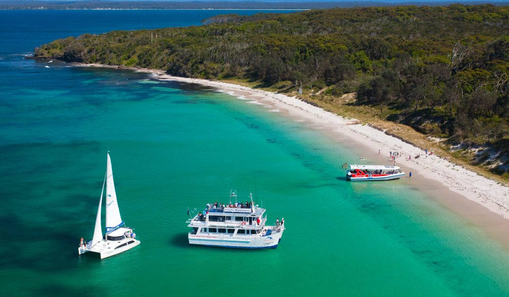 Whales, dolphins and beaches, oh my! Jervis Bay is a whale-watchers haven